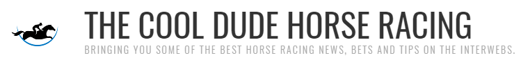 The Cool Dude Horse Racing
