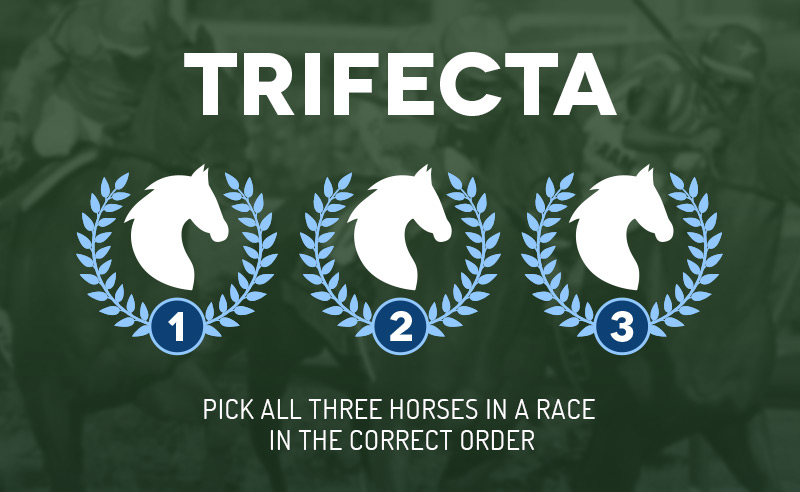 Trifecta horse racing bets - online sports betting tips