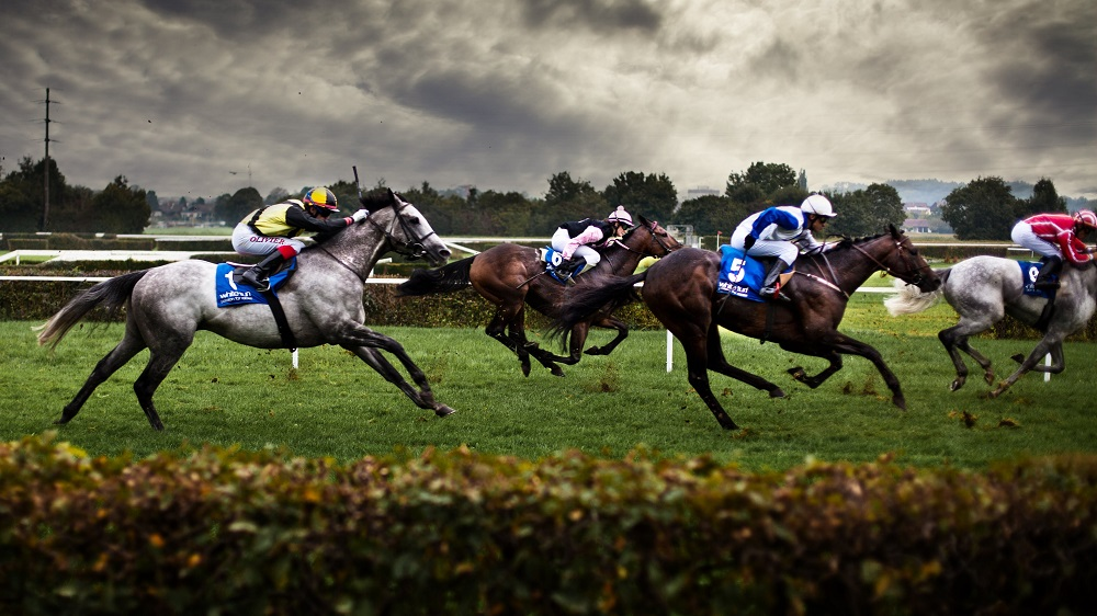 8 Tips for Horse Racing Betting for Beginners - Sports betting online