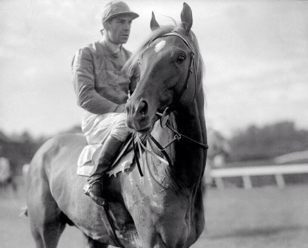 Gloaming – A Multi Race Winning Racehorse That Had Many Consecutive Wins